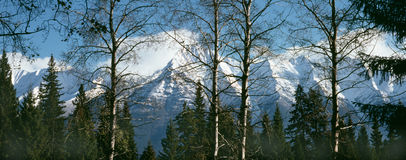 Rocky Mountains, British Columbia, Canada. Rocky Mountains with new autumn snow, Kootenay National Park. 6x7 drum scan royalty free stock images