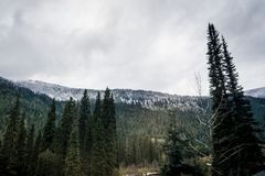 Rocky Mountains in Canada covered in early snow. Of October royalty free stock image