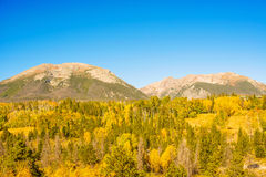 Rocky Mountains in Colorado Stock Afbeelding