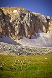 Rocky Mountains con estate Caucaso del paesaggio della neve del ghiacciaio bella Fotografie Stock Libere da Diritti