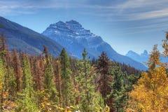 Rocky Mountains con gli alberi in priorità alta Fotografia Stock