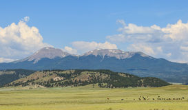 Rocky Mountains Royalty Free Stock Photo