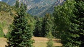 Rocky Mountains dans le Colorado clips vidéos