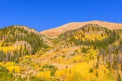 Rocky Mountains em Colorado Imagens de Stock Royalty Free