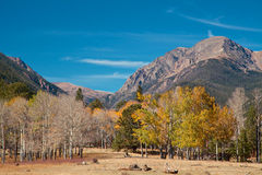 Rocky Mountains in Fall Stock Images