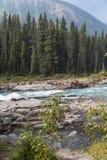 Rocky Mountains-Flussszene Lizenzfreie Stockbilder