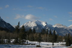 Rocky mountains and forest. Jasper national park, alberta, canada, good sunny weather Stock Photos