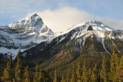 Rocky mountains and forests Stock Image
