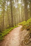 Rocky Mountains Hiking Trail Stock Photo