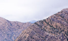 Rocky mountains of Himalayas at Katra, Jammu. With very less forest cover stock photos