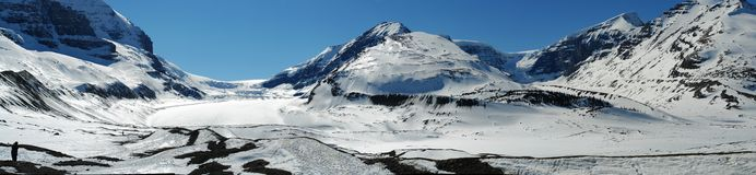 rocky mountains and icefields Royalty Free Stock Image