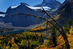 Rocky Mountains im Fall stockfotos