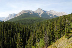 Rocky mountains landscape Stock Photos