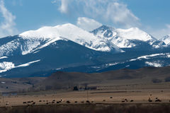Rocky mountains in montana Stock Image