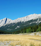 Rocky mountains and meadow royalty free stock photo