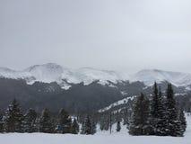 Rocky Mountains på vintern parkerar Arkivfoton