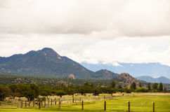 Rocky Mountains pasture Royalty Free Stock Images