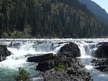 Water rushing over rocks in the alaskan wilderness stock video footage