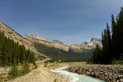 The rocky mountains in the spring Royalty Free Stock Image