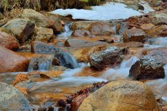 Rocky Mountains Stream Royalty Free Stock Image