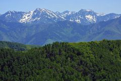 Rocky mountains stretching into distance. Snow-capped alpine mountain ranges stretching off into the distance beneat blue sky, with forested hills in foreground Stock Images