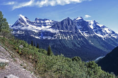 Rocky  Mountains. View of snow clad mountains with trees in the foreground Stock Photography