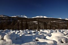 Rocky Mountains in winter Royalty Free Stock Images