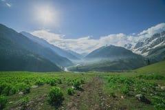 Rocky Mountains y campo verde fotos de archivo