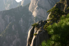 Rocky mountainside. Scenic view of green plants on rocky mountainside Stock Photo