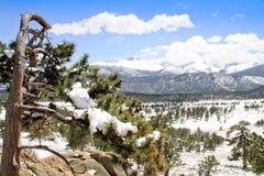 Rocky Mtn Nat Park snow scene Stock Image
