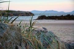 rocky na plaży Anglesey północ Walia Fotografia Stock
