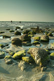 rocky na plaży Zdjęcie Stock