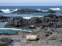 Rocky Oregon Coast. In February stock photography