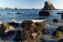 Rocky Oregon coast, low tide Stock Images