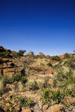 Rocky Outcrop. Rocky terrain with small shrubs in the foreground, beautiful bright blue sunny shy in the background Royalty Free Stock Photos