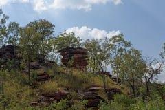 Rocky Outcrop Amongst The Trees foto de stock royalty free