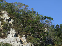 Rocky outcrop in Australia. A detail of a rocky escarpment in Northern Queensland, Australia Royalty Free Stock Images