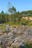Rocky outcrops of the Salair ridge have gold of the river Suenga Stock Image