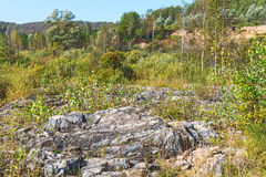 Rocky outcrops of the Salair ridge have gold of the river Suenga Stock Photography