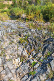 Rocky outcrops of the Salair ridge have gold of the river Suenga Royalty Free Stock Photos