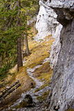 Rocky path. In the forest under stone cliff stock photography