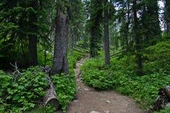 Rocky path Stock Image