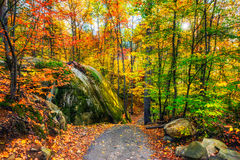 Rocky Path in an Autumn Forest. A path through a rocky forested landscape during the day in the autumn season Stock Photography