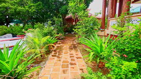 Rocky Path between Plants Flowers in Pots in Villa Yard. Brown rocky path between tropical plants and flowers in pots in villa yard under sun light stock video footage
