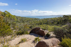 Rocky path and vegetation along trail up to Wineglass Bay lookou Royalty Free Stock Photos