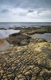 Rocky pattern at Kimmeridge - Dorset, England. The pattern of the rocky beach from Kimmeridge Bay Royalty Free Stock Photography