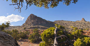 Rocky Peak and Junipers Stock Photography