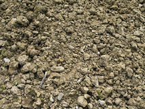 Rocky poor garden soil background Royalty Free Stock Photos