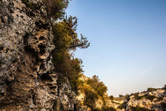 Rocky ravine Stock Images