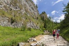 Rocky ravine Royalty Free Stock Photo